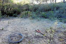 Sant Josep corta el 'cable trampa' y busca a sus autores