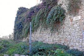 Luz verde definitiva a los trabajos para la recuperación de los jardines de La Curia