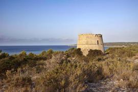 La torre del Pi d'en Català se reformará en enero