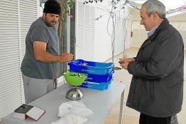 A por el rico 'gerret' en Formentera