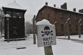 El Consejo de Europa recuerda Auschwitz en el 70 aniversario de su liberación