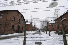70 aniversario de la liberación del campo de exterminio nazi de Auschwitz-Birkenau