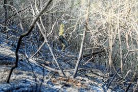 El incendio de Sant Miquel pudo ser provocado por una negligencia de un vecino de la zona
