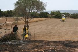Un incendio en Ca Marí alerta de nuevo a los formenterenses