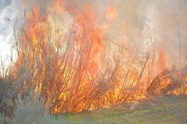 Controlado el incendio de Sant Llorenç tras quemar 0,5 hectáreas