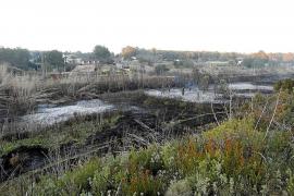 Controlado el incendio que quemó  media hectárea en la vénda de Bellmunt
