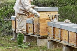 Miel con sabor a Menorca
