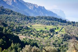 Se cancela el congreso sobre la Serra de Tramuntana