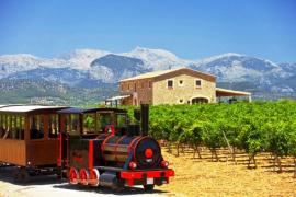 Wine Days Mallorca 2015,  'Nou dies, nou experiències'