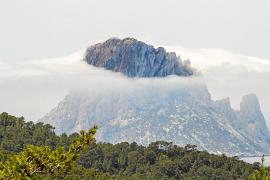 Más de 2500 personas visitaron las Reservas Naturales de Eivissa en 2014