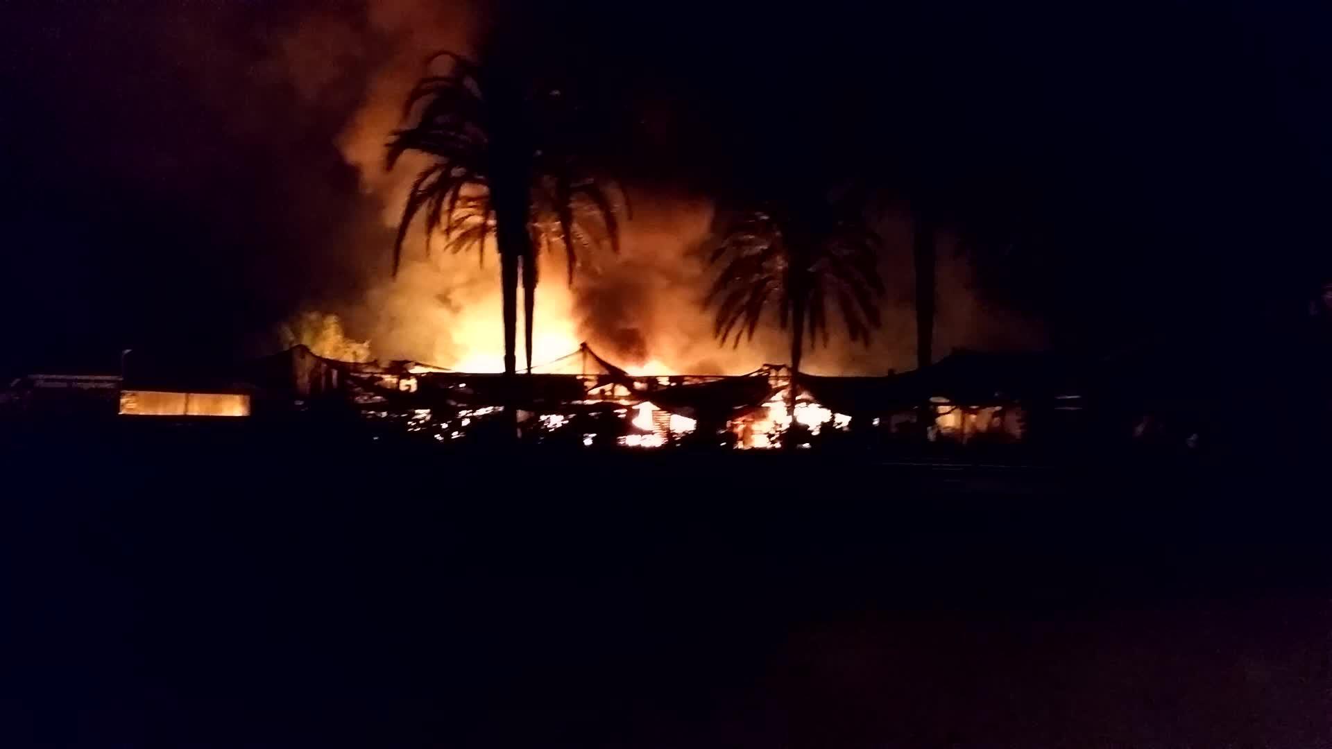 VÍDEO: Un incendio calcina los invernaderos de Eiviss Garden