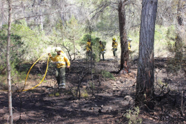 Controlado un incendio en la zona de Ses Salines
