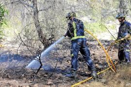 Un incendio enciende la alarma en el Parque Natural de ses Salines