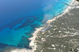 Un segundo incendio en Formentera quema 200 metros de bosque