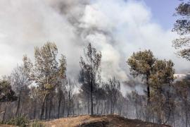 El fuego declarado en Sant Miquel puede haber calcinado ya unas 30 hectáreas