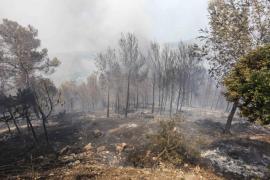 Estabilizado el incendio forestal de Sant Miquel que ha calcinado 23 hectáreas