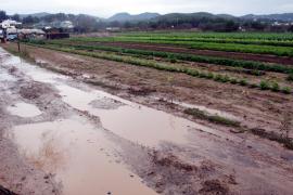 Eivissa sufre un déficit del 25% en las precipitaciones acumuladas