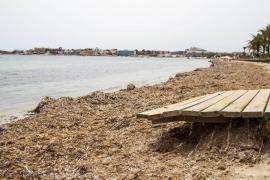 Usuarios y vecinos de Talamanca se quejan de la dejadez y suciedad de la playa