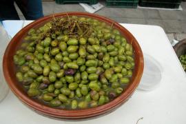 'Olives' verdes, verdes partidas y negras, típicas de Mallorca