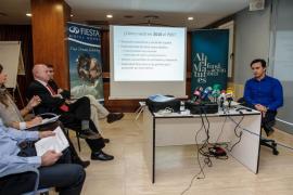 El proyecto de Matutes para Platja d'en Bossa no convence al Consell d'Eivissa