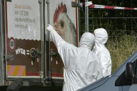 Son 71 los cadáveres de refugiados hallados en el camión abandonado en Austria
