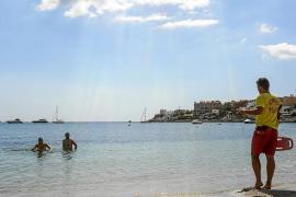 Resignación en la playa de Talamanca