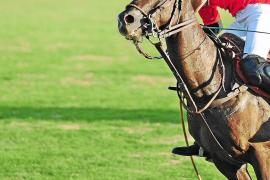 Polo, mezcla de lujo y deporte