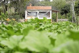 La agricultura ecológica gana terreno