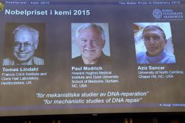 Nobel a tres químicos por haber resuelto algunas incógnitas del ADN
