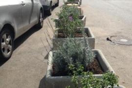 Vila mejora su aspecto con pequeñas actuaciones en algunos jardines