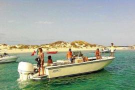 Formentera buscará fondos para comprar la isla de s'Espalmador