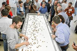 La Cooperativa de Sant Antoni estrena su primera máquina peladora de almendras