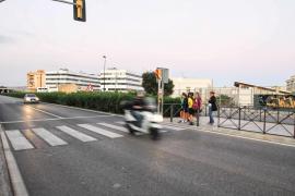 Un perro fallece en Eivissa tras ser atropellado por una motocicleta