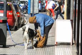 Vila impulsa una campaña para concienciar sobre la recogida de excrementos de perro