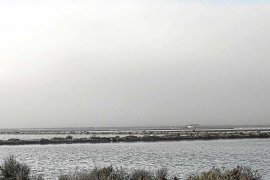 La niebla sobre Eivissa obliga a cancelar cuatro vuelos y a desviar otros tantos