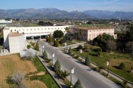 Los centros educativos de Balears aplicarán protocolos sobre  'bullying' y transexualidad en 2016