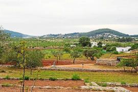 El Govern prohibirá en Eivissa construir en áreas naturales de más de 50.000 metros