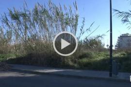 VÍDEO: El Consell quiere construir un nuevo centro de menores cerca del paseo marítimo de Eivissa