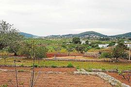 El GEN considera que la protección de las zonas ANEI de las Pitiüses es «insuficiente»