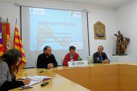 El Govern balear y el Consell de Formentera destinarán 42.000 euros contra el picudo rojo
