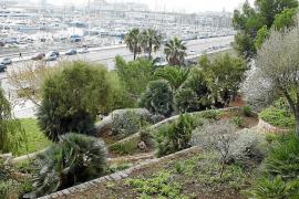 Jardines de Nazaret