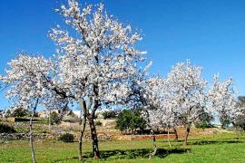 Hola.com sugiere visitar Eivissa fuera de temporada