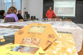 Un experto apicultor alerta del descenso «vertiginoso»de las comunidades de abejas