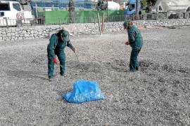 34 parados de larga duración trabajan en la mejora de playas y jardines de Vila