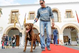 Clase canina en Santa Eulària