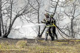 El PP pedirá en el pleno que se prohíba hacer fuego desde abril