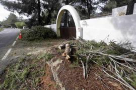 Las consecuencias del temporal de viento en Eivissa