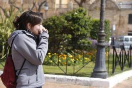 Contaminación de intensidad leve de polen para esta primavera en Balears
