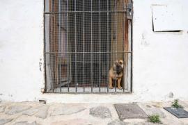 El barrio de sa Penya días antes de la 'operación desalojo'