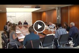 Gonzaga advierte: «Si todo sigue así, denunciaremos en los juzgados al Consell»